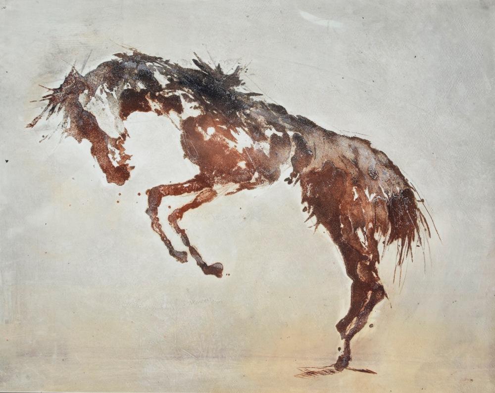 16.Equus Ferus Caballus II