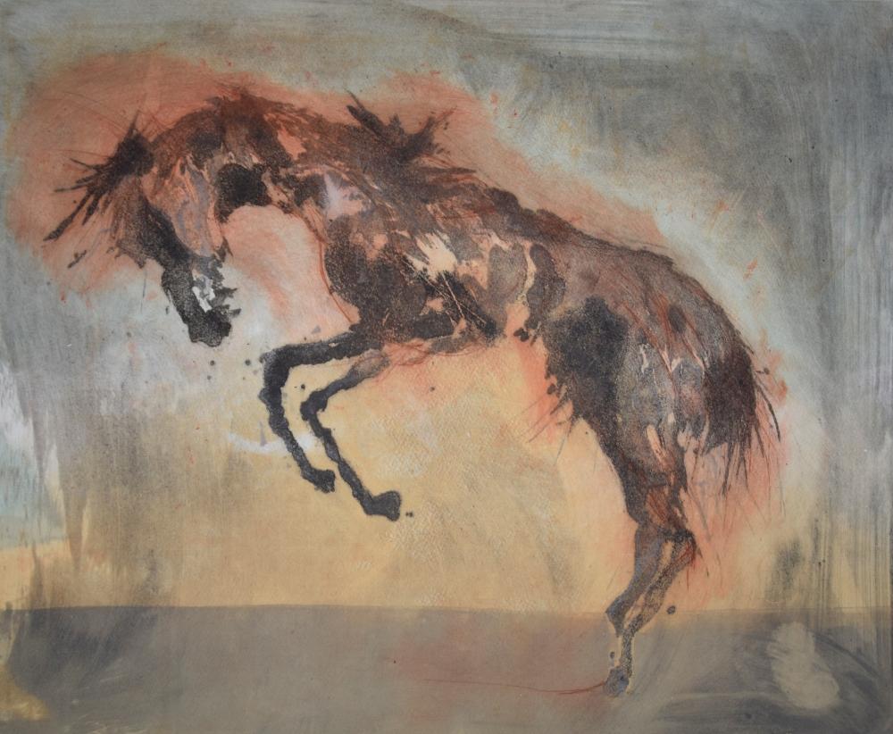 17.Equus Ferus Caballus III