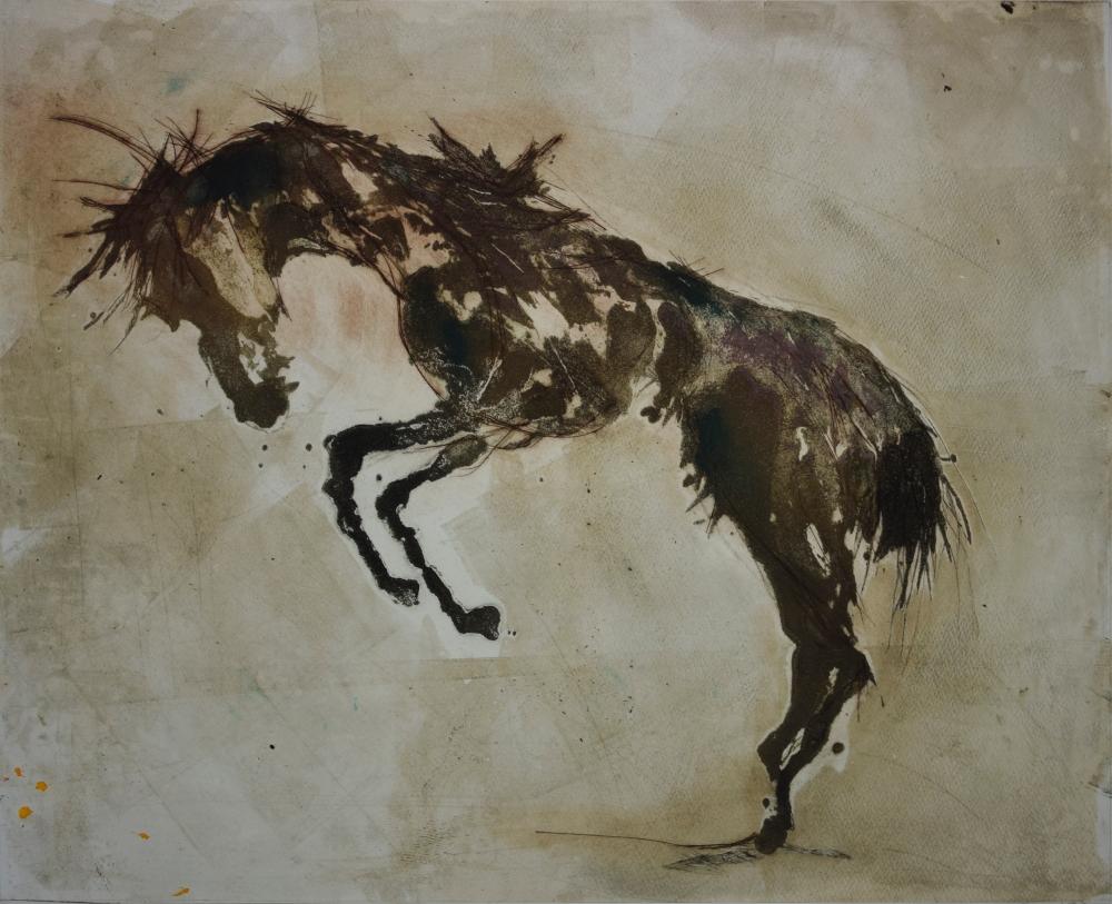 18.Equus Ferus Caballus IV