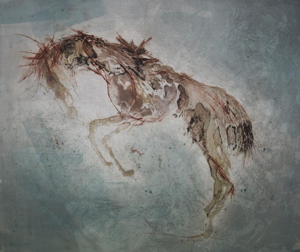 19.Equus Ferus Caballus V