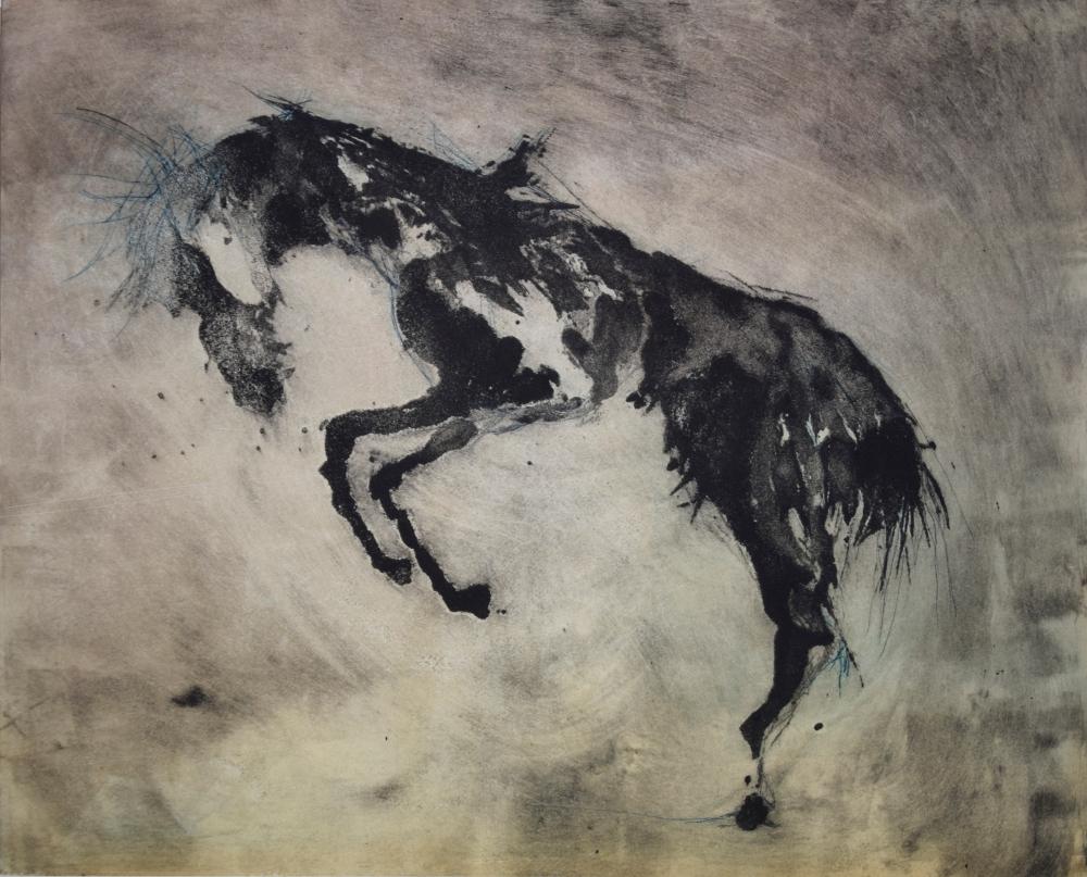 20.Equus Ferus Caballus VI