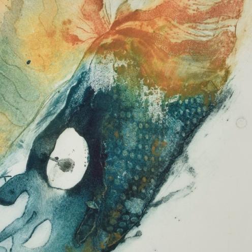 Nautilus IV {detail}