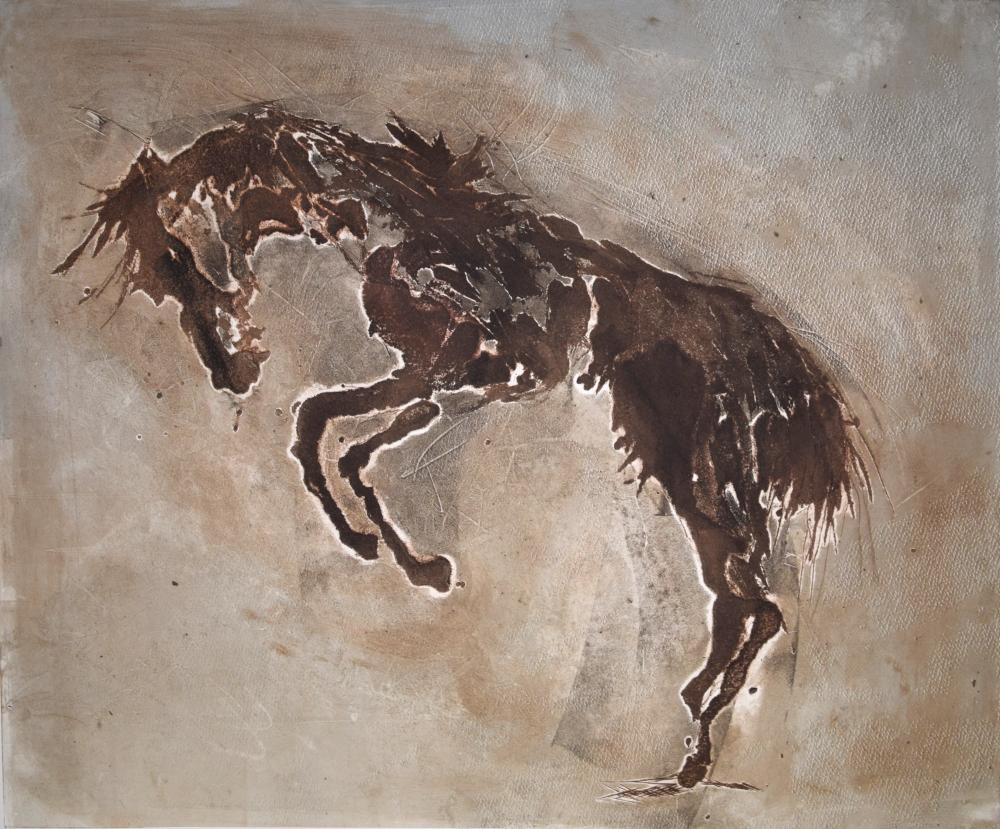 Equus Ferus Caballus VII