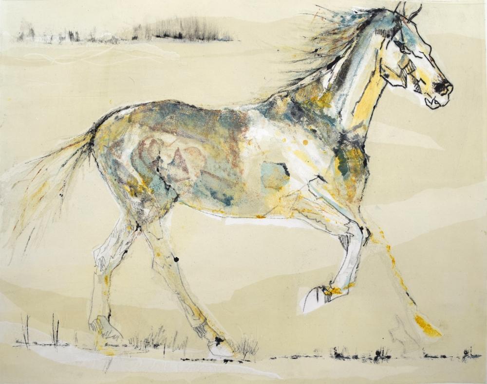 72. Equus Caballus III