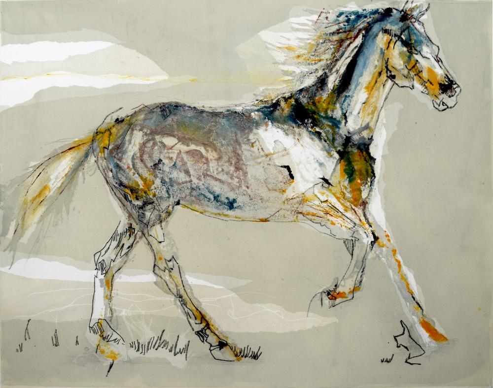 73. Equus Caballus IV