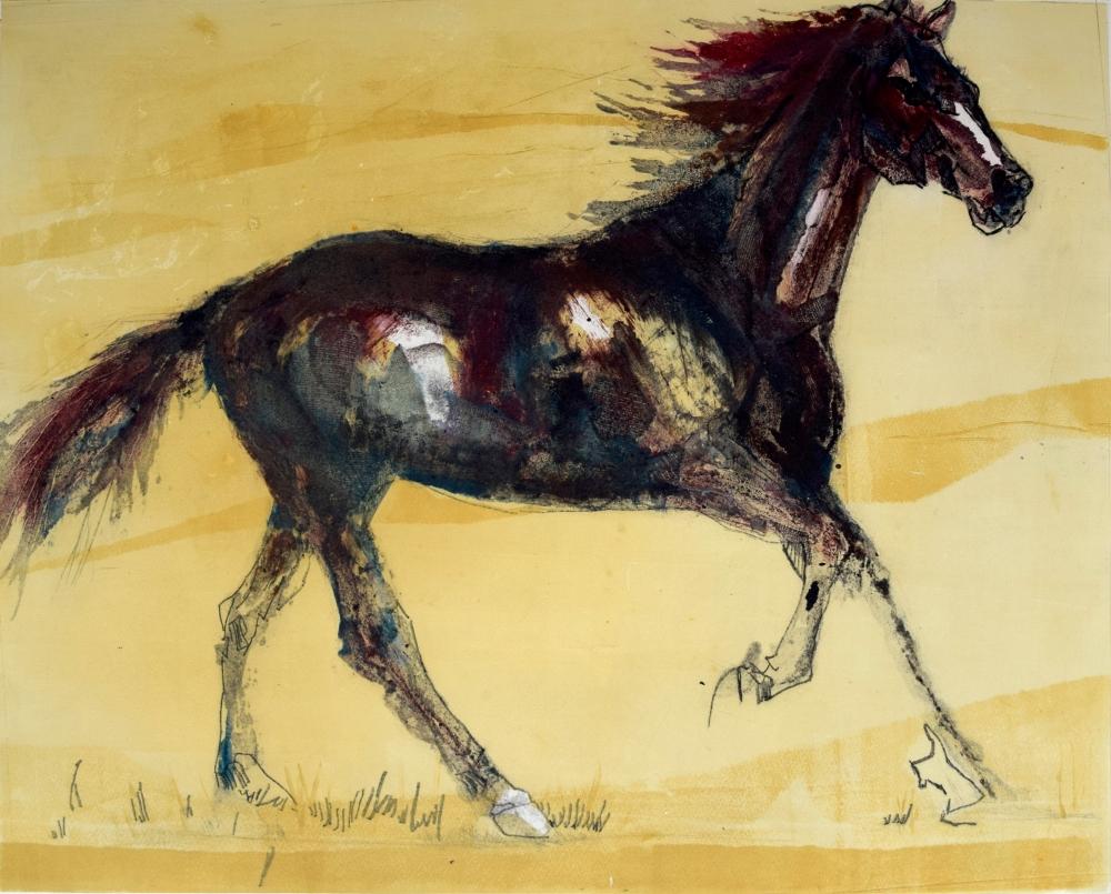 75. Equus Caballus VI
