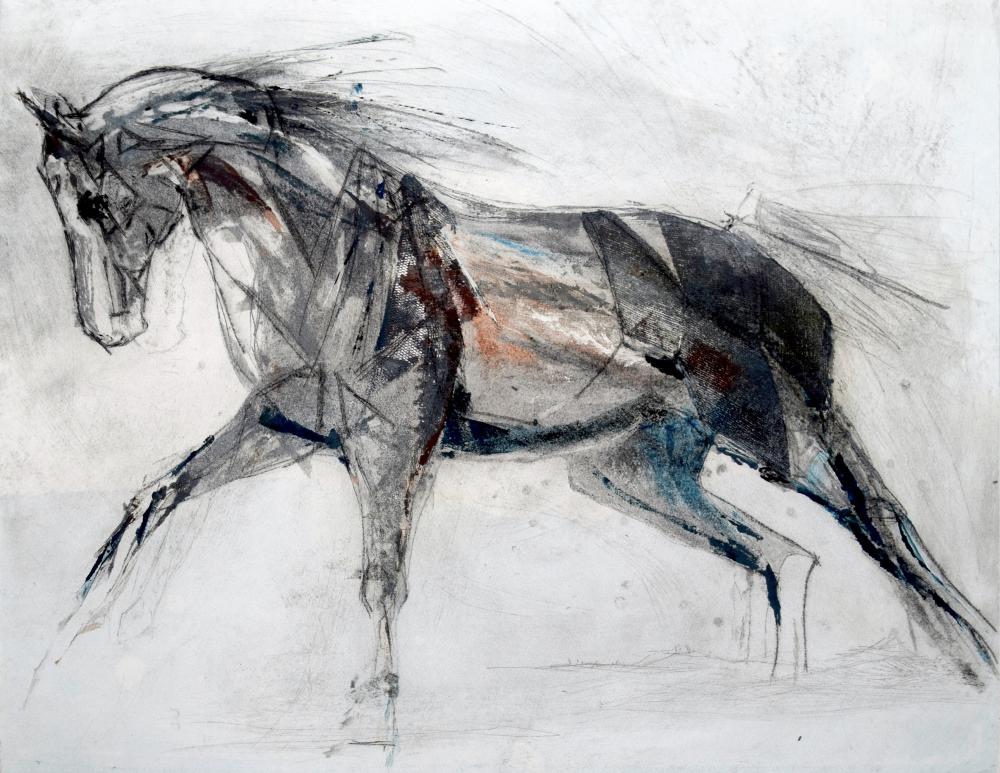76.-equini-i.b.jpg
