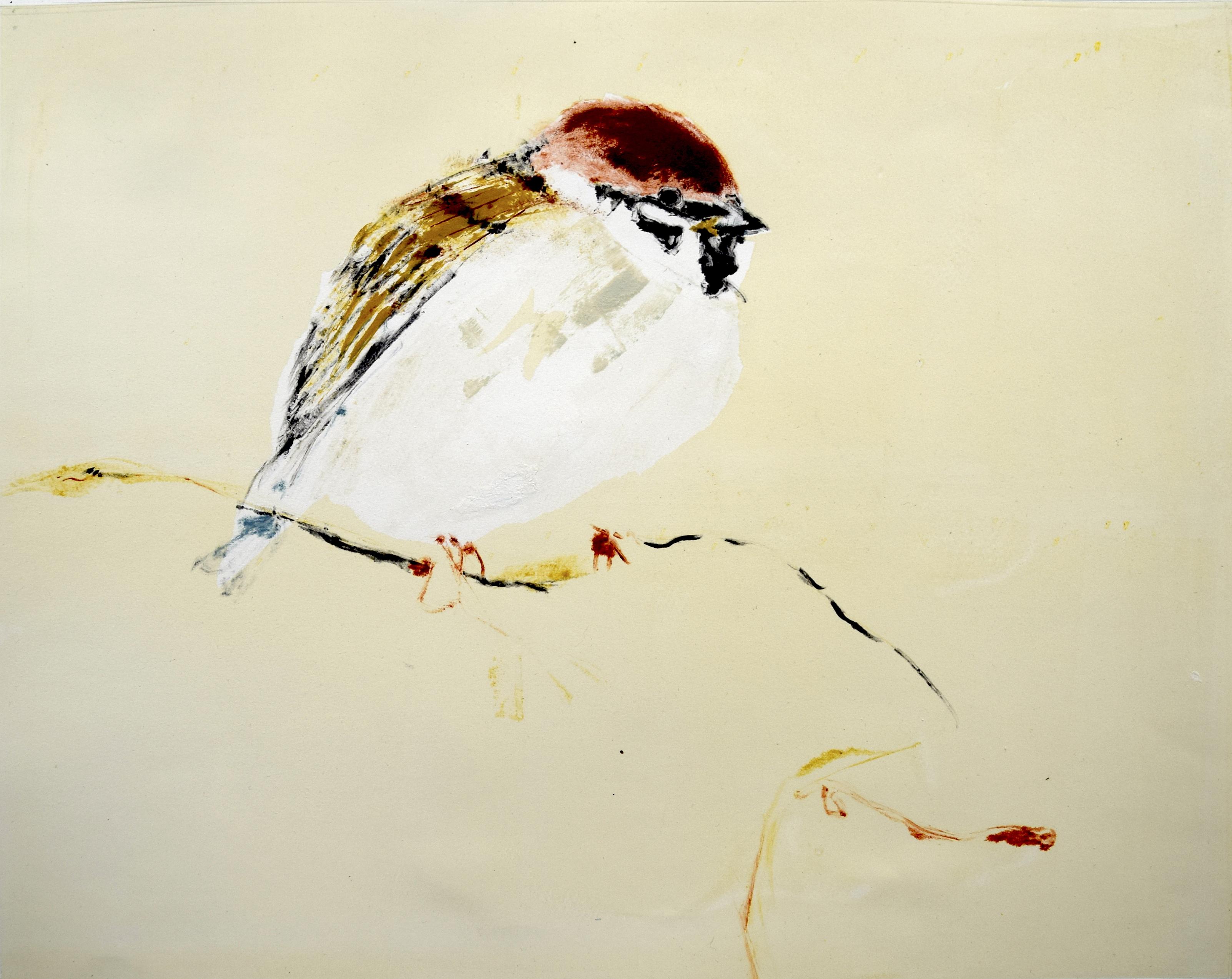 #bird #etching #art4sale #artist #bison #gardenbird