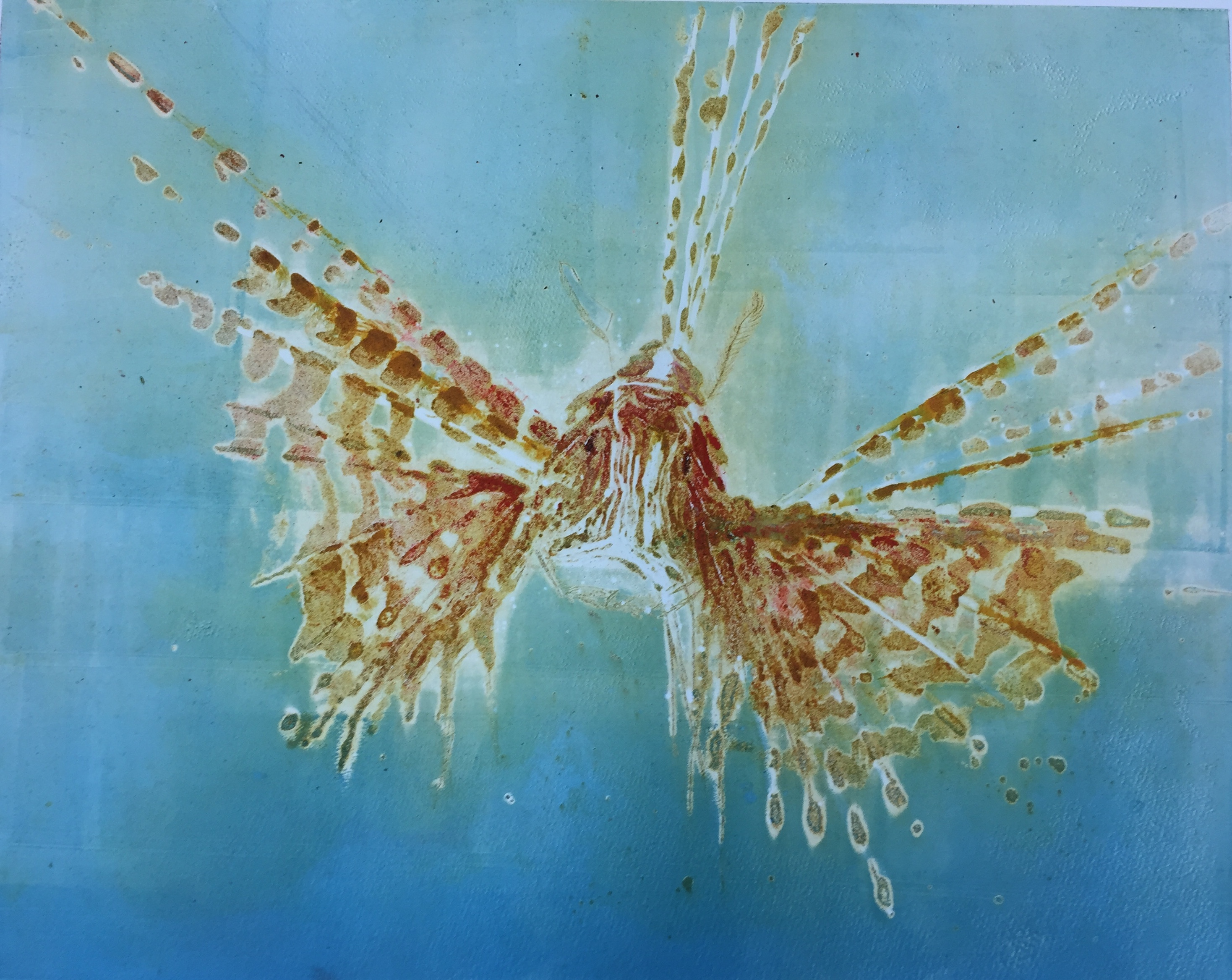 60.Pterois II
