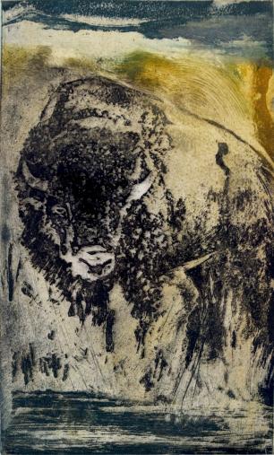 #bison #etching #art4sale #artist