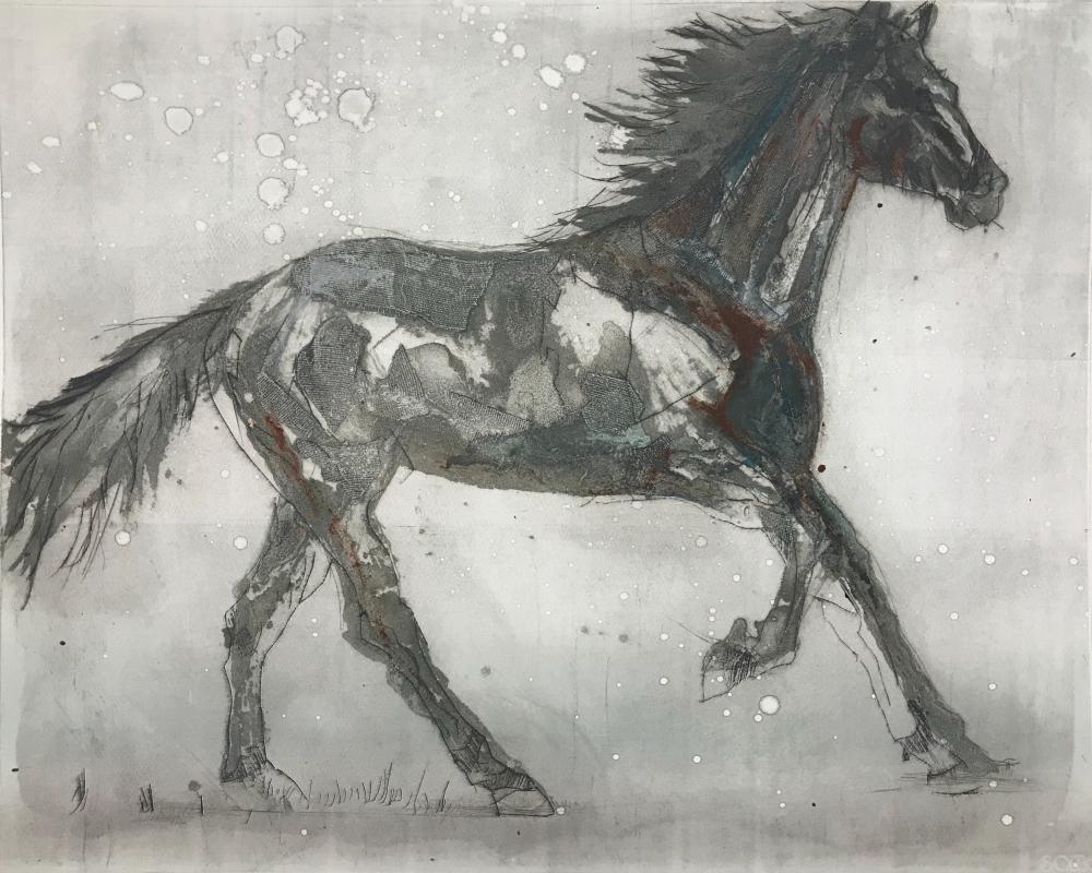 79. Equus Caballus VII